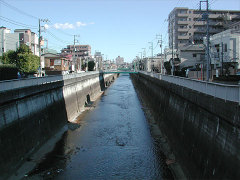 石神井川を渡る