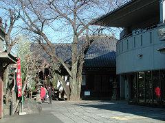 観明寺 本堂